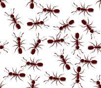 Seamless Ants Stock Illustration