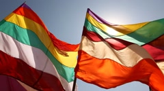 Colorfull Flags - stock footage