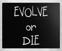"""Evolve or Die"" handwritten with white chalk on a blackboard Stock Photos"