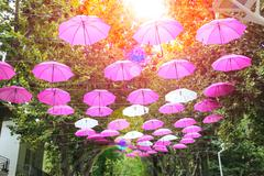 Pink and white umbrellas decorate streets in the resort town Bellaria Igea Ma - stock photo