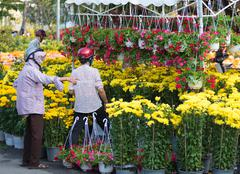 At flower market before Tet (Lunar New Year) Stock Photos