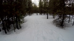 Snowshoeing in Forest 1 Stock Footage