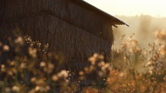Vintage old hut with grass field on the mountain in the morning Stock Footage