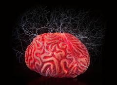 Human rubber brain with electric shocks - stock photo
