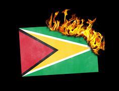 Stock Illustration of Flag burning - Guyana