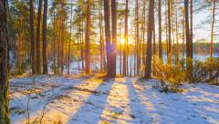 Sunset in winter forest, panorama 4K time-lapse Stock Footage