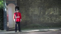A Guardsman on sentry duty in London Stock Footage
