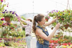 Female gardener trimming plants with colleague in background at greenhouse Stock Photos