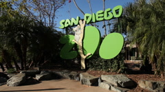 Wide Shot of San Diego Zoo Sign Stock Footage
