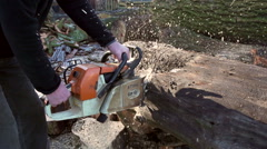 Lumberjack cutting wood with a chainsaw [Slomo] Stock Footage