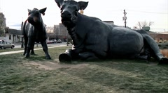 Denver Art Museum Cow Statues Stock Footage