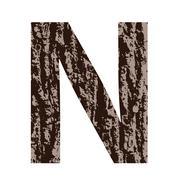 Stock Illustration of letter N made from oak bark