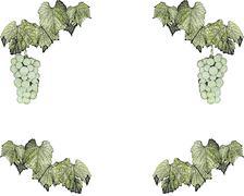 Stock Illustration of Vine frame
