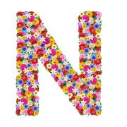 N, letter of the alphabet in different flowers isolated on white background - stock photo