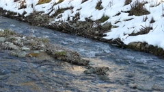 Creek At Winter - Creek With The Snow Stock Footage