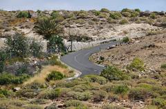 Desert road Kuvituskuvat