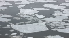 Ice chunks float in ocean harbor, close up, Portland Maine Stock Footage