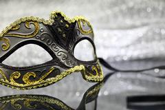 Vintage carnival mask in front of glittering background Stock Photos