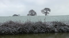Frost covered field leafless trees canal foreground rural setting Stock Footage