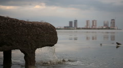 pipe of sewer water from sewage system directly near sea - stock footage