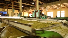 Manufacture - Sifting [Track] Norwood Factory (4) Stock Footage