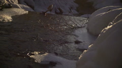 View of river at winter time, steadycam shot - stock footage