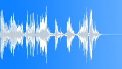 Lion Growls Sound Effect