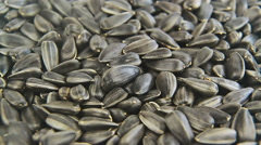 Sunflower seeds close up rotation Stock Footage