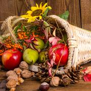 Cornucopia Stock Photos