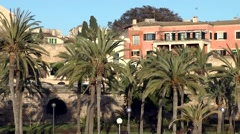 Spain Palma de Mallorca 060 old district Dalt Murada with palm trees Stock Footage