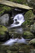 Bunch Creek Falls - stock photo