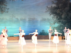 Swan lake, Tchaikovsky. Related clips are in my portfolio in 1920x1080. Stock Footage