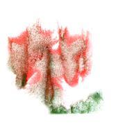 Ink blot red, green, gray splatter background isolated on white Stock Illustration
