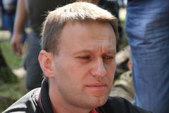 Politician Alexei Navalny and fly - stock photo