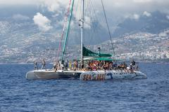 Tourists making a boat trip for whale watching near Madeira Island, Portugal - stock photo