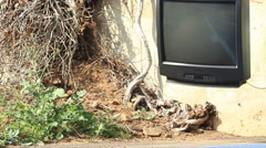 Falling TV smashes on the ground Stock Footage