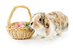 Stock Photo of Easter: Bunny Sitting Next To Basket Of Eggs