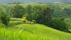 Summer nature landscape, green hills of Tuscany, Italy. Arkistovideo