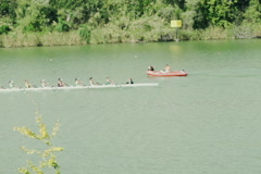 A group of men kayaking, rowing in river, slow motion shot at 120fps NTSC Stock Footage