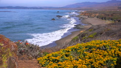 Gorgeous beach and coastal scenery along California Highway One. Stock Footage
