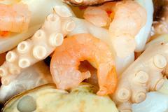 prawn octopus squid - stock photo