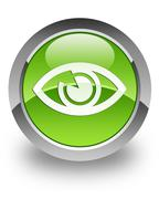 Eye glossy icon Stock Photos