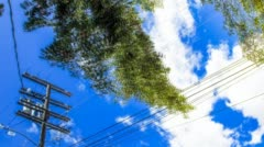 Cloudscape moving past trees and power lines Stock Footage