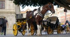Seville plaza hourse tourist ride 4k spain Stock Footage
