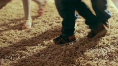 The children crawling around a carpet, rough-and-tumble Stock Footage