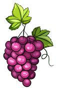 A cluster of grapes Stock Illustration