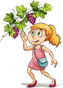 A girl and a grapevine Stock Illustration