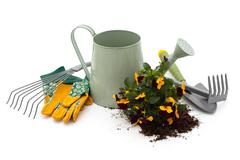 Tools for gardening. - stock photo