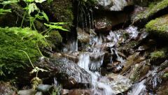 Beautiful tiny brook with cold water Stock Footage