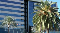 Spain Palma de Mallorca 073 modern glass facade behind tall palm tree Stock Footage